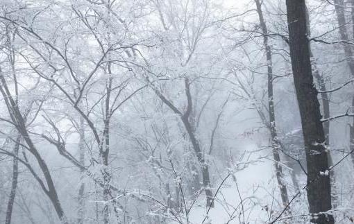 甘肃崆峒山春日雪景云雾飘渺似仙境