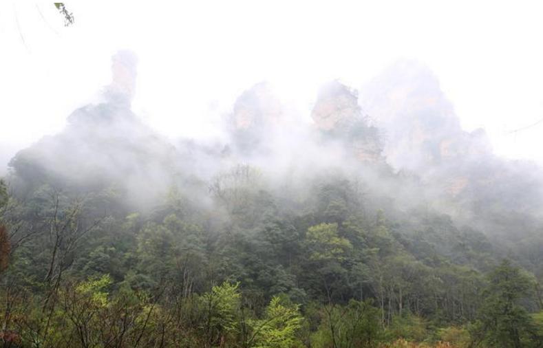 云雾缭绕画中游