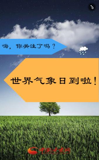 H5丨世界气象日到啦!