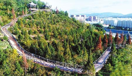 【生态聚焦】春来处处绿意浓——天水市清水县林业生态建设见闻