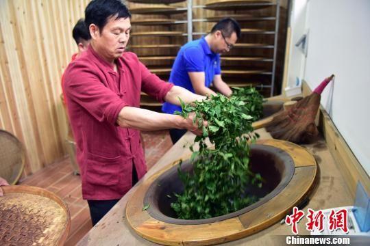 国家非遗传承人张回春传统手工制茶