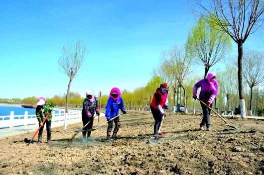 今年酒泉市城区园林绿化工程总投资2.5亿余元(图)