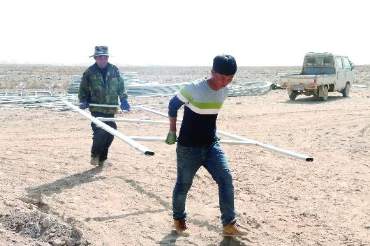 酒泉肃州区加快戈壁生态农业样板区建设步伐(图)