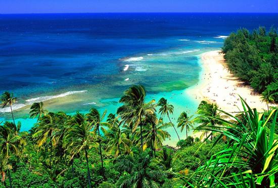 中国领事馆提醒:远离夏威夷火山和地震区域