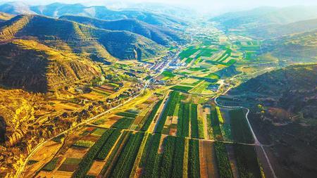 子午岭下的绿色希望——庆阳市宁县盘克镇前渠村发展苗林产业纪实