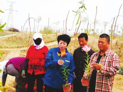 【我奋斗我幸福】兰州:绿化村里书写花语生活