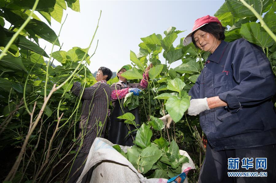 《利剑出鞘 执掌天平》——榆中县人民法院执行工作纪实