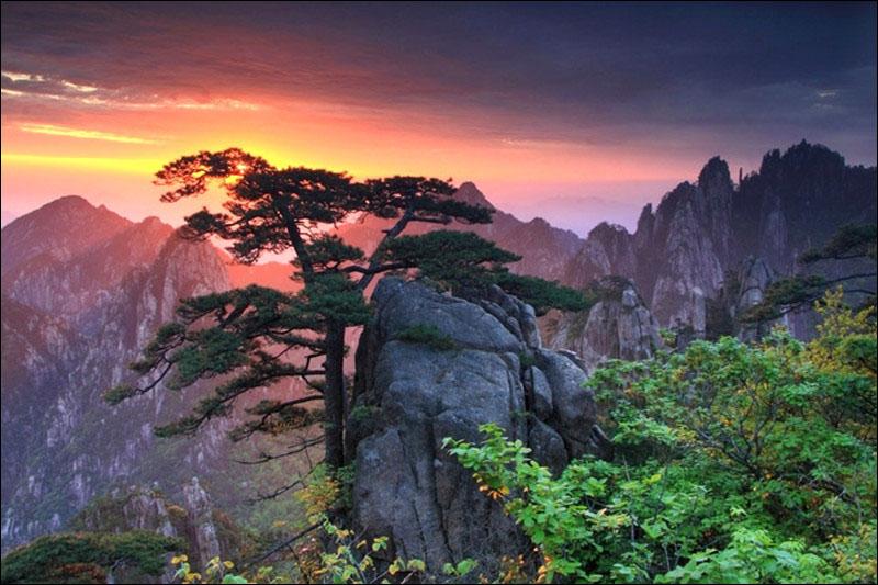 盘点五月黄山看点:不可错过的人间美景