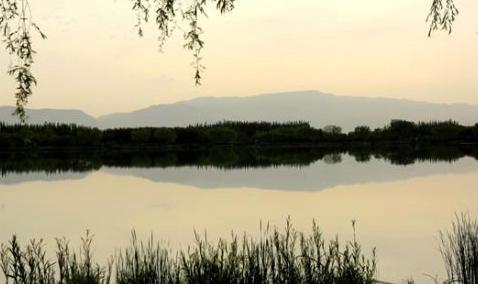 甘肃戈壁湿地夏日清晨风光如画