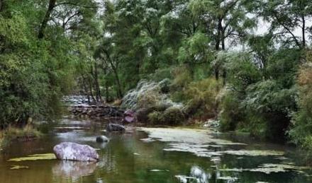 祁连山自然保护区:企业整改退出 水泥厂区恢复