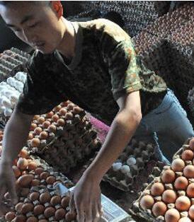5月份甘肃省肉蛋价格出现小幅波动