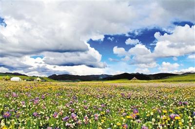 四川省阿坝州红原县来兰推广旅游产业