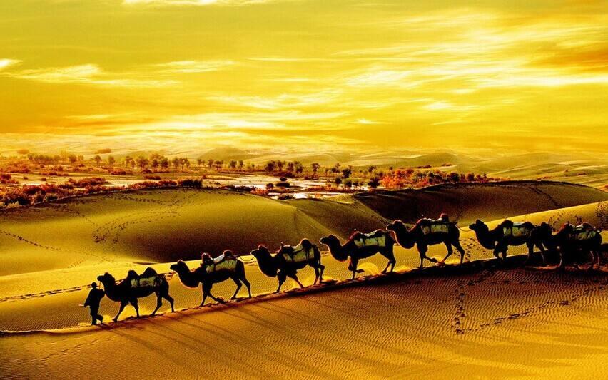 【评论】打造丝绸之路旅游黄金通道——热烈祝贺第七届敦煌行·丝绸之路国际旅游节举办