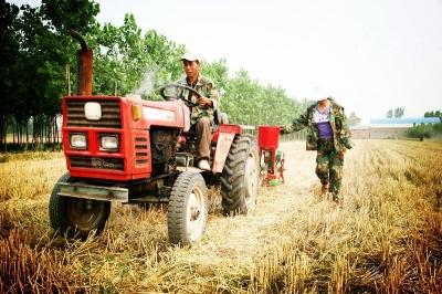 """冬小麦新品种""""陇鉴108""""在甘肃省实现大面积推广应用"""