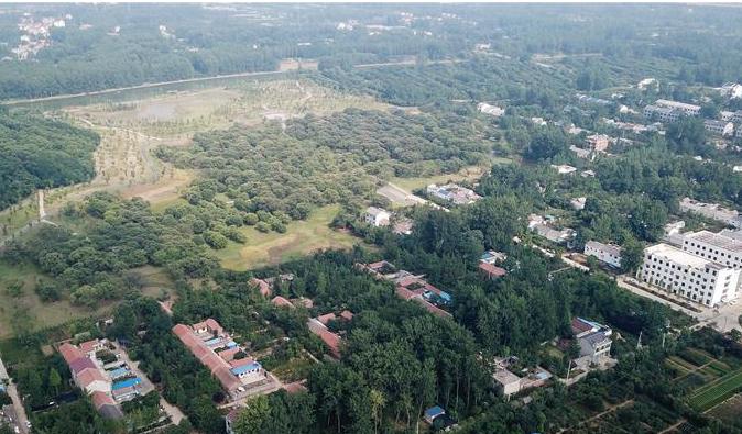 江苏:打造生态古栗林 建设特色山荡村