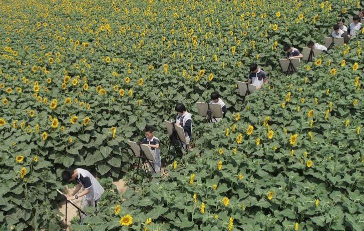 河北南宫:农旅融合助推乡村振兴