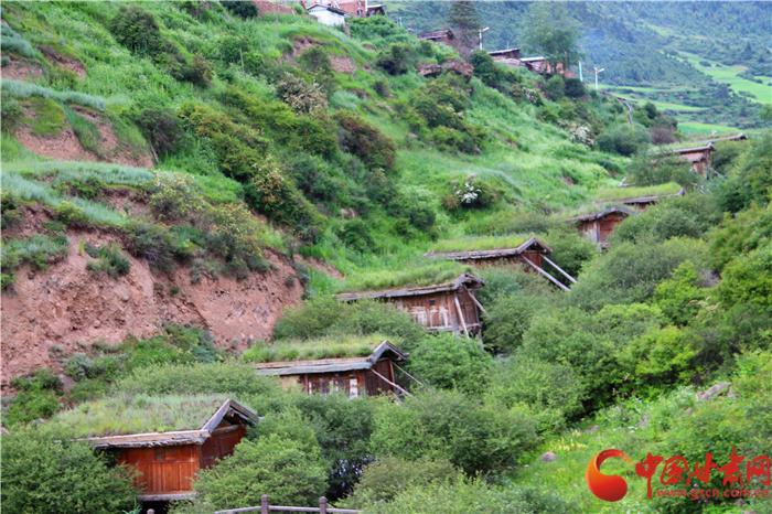 甘肃地理|甘南迭部洋布村:百年水磨转动岁月悠情(组图)