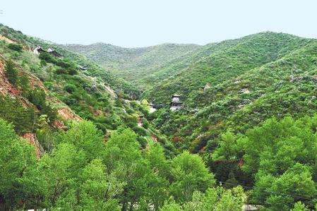 白银市会宁县铁木山造林绿化工作成效显著