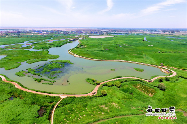 """改革开放40年丨张掖:黑河着墨绘清流 """"弱水""""不弱润居延"""