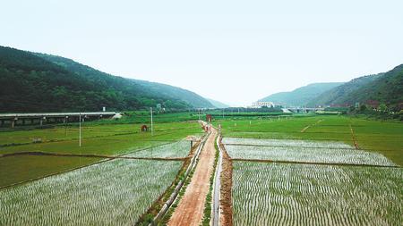 绿野平畴气象新——庆阳市农业综合开发工作综述