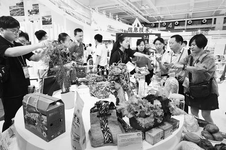 兰洽会兰州馆展出特色农副产品 吸引了众多参观者