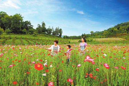 陇南市徽县打造乡村旅游产业 致富百姓
