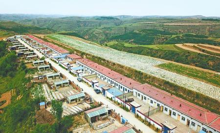 小村里的脱贫路——庆阳市华池县紫坊畔乡堡子山村发展见闻