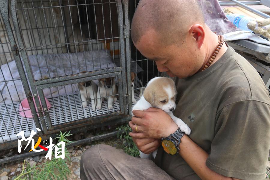 """【陇人相】十年放不下的责任  他给两千只流浪动物一个""""家"""""""