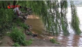 【洋芋蛋·视频】黄河兰州段迎来主汛期 市民应远离河道