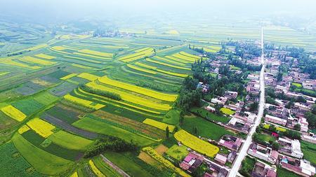 盛夏时节 临夏州和政县松鸣镇狼土泉村风景如画