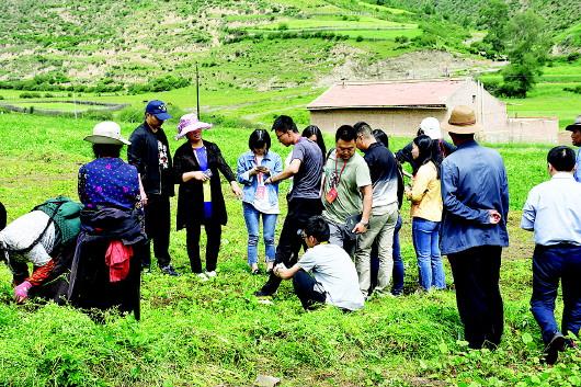 """13家网络媒体14名记者赴甘南州开展""""脱贫攻坚在行动""""专题采访活动"""