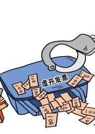 甘肃省打击虚开发票和骗税行为