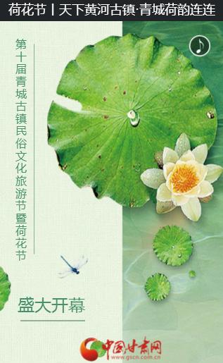 荷花节 | 天下黄河古镇·青城荷韵连连
