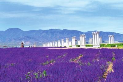 中国·金昌第六届骊靬文化旅游节将举行 九大活动助推镍都旅游(图)