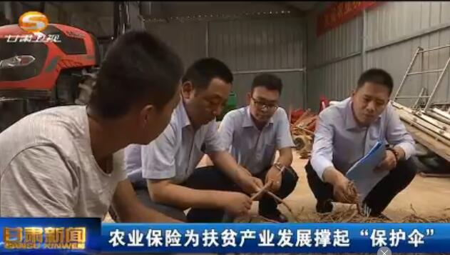 """[甘肃新闻]农业保险为扶贫产业发展撑起""""保护伞"""""""