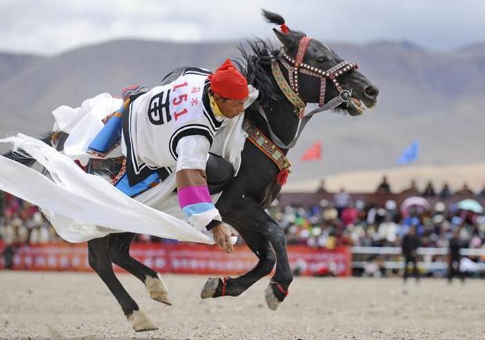 西藏阿里举行赛马竞技大赛