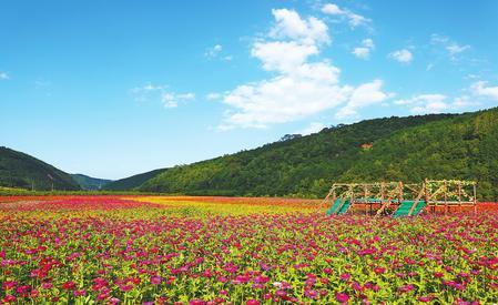 庆阳市合水县太白镇全力打造乡村旅游景点