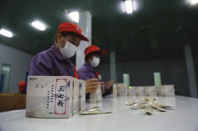 甘肃中药现代化产业基地新区建成投产