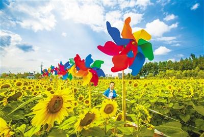 迎接甘肃省第十四届运动会 临夏准备好了