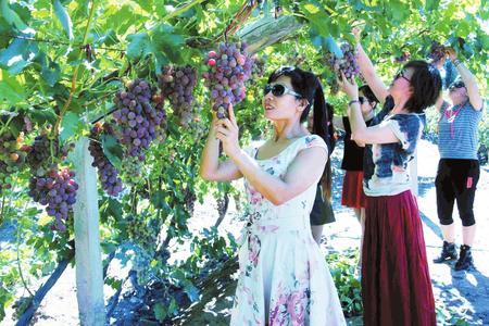 酒泉金塔以全域旅游助推乡村振兴(图)