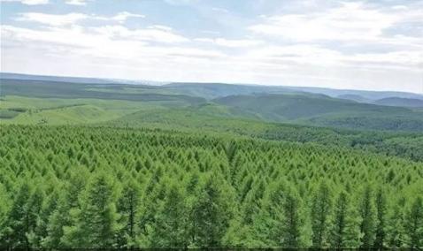 中共甘肃省委甘肃省人民政府关于加快推进大规模国土绿化的实施意见