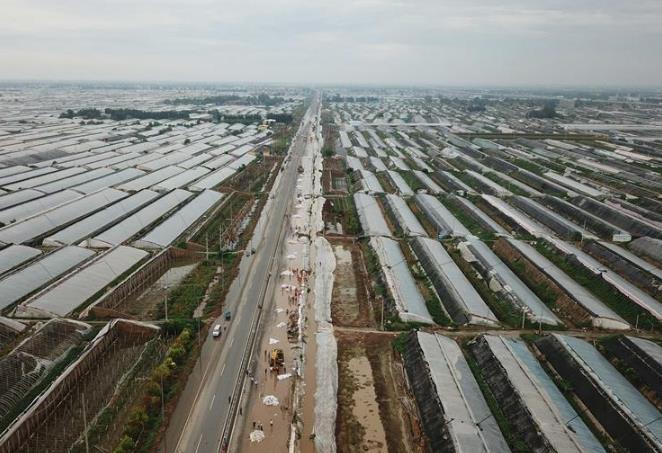 山东寿光:受灾蔬菜大棚排涝提速