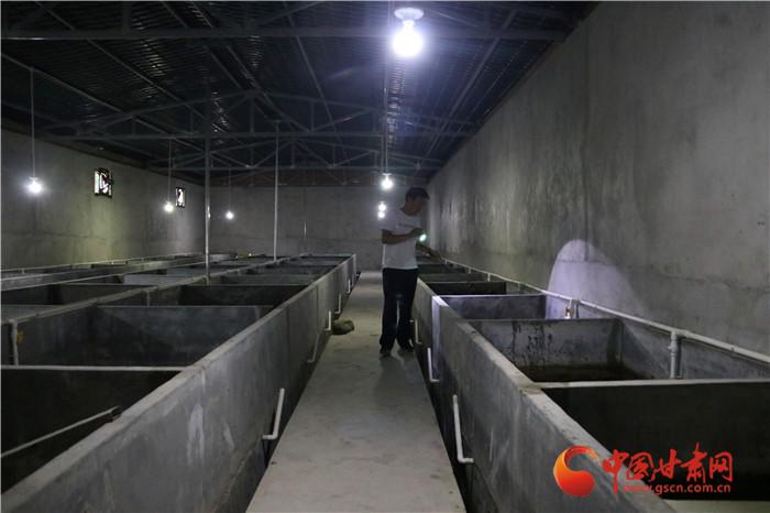 陇原环保世纪行|陇南康县为甘肃娃娃鱼筑家园(组图)