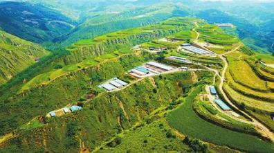 庆阳华池县怀安乡怀富养殖农民专业合作社养殖基地(图)