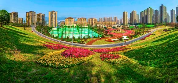 """九龙坡区推行""""五长制+网格化"""" 推动城市品质不断提升"""