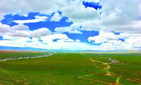 构筑保护屏障 维护生态安全——甘肃盐池湾国家级自然保护区生态环境持续改善(图)