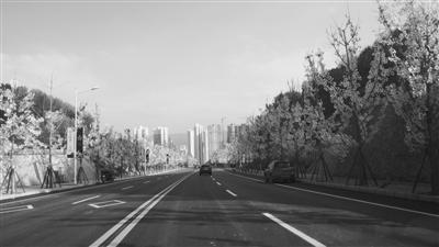 出行提醒丨九州东南出口S417#路建成通车 九州又增一出口