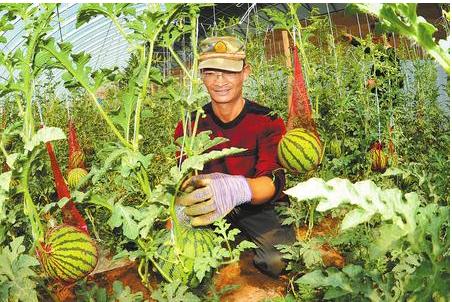 从好产品到好品牌 ——酒泉市品牌农业发展纪实