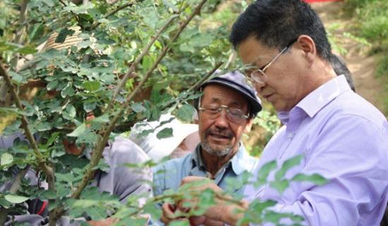 临夏永靖开展林果产业技术培训 激发内生动力助推扶贫