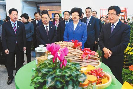 2018中国(甘肃)中医药产业博览会隆重开幕